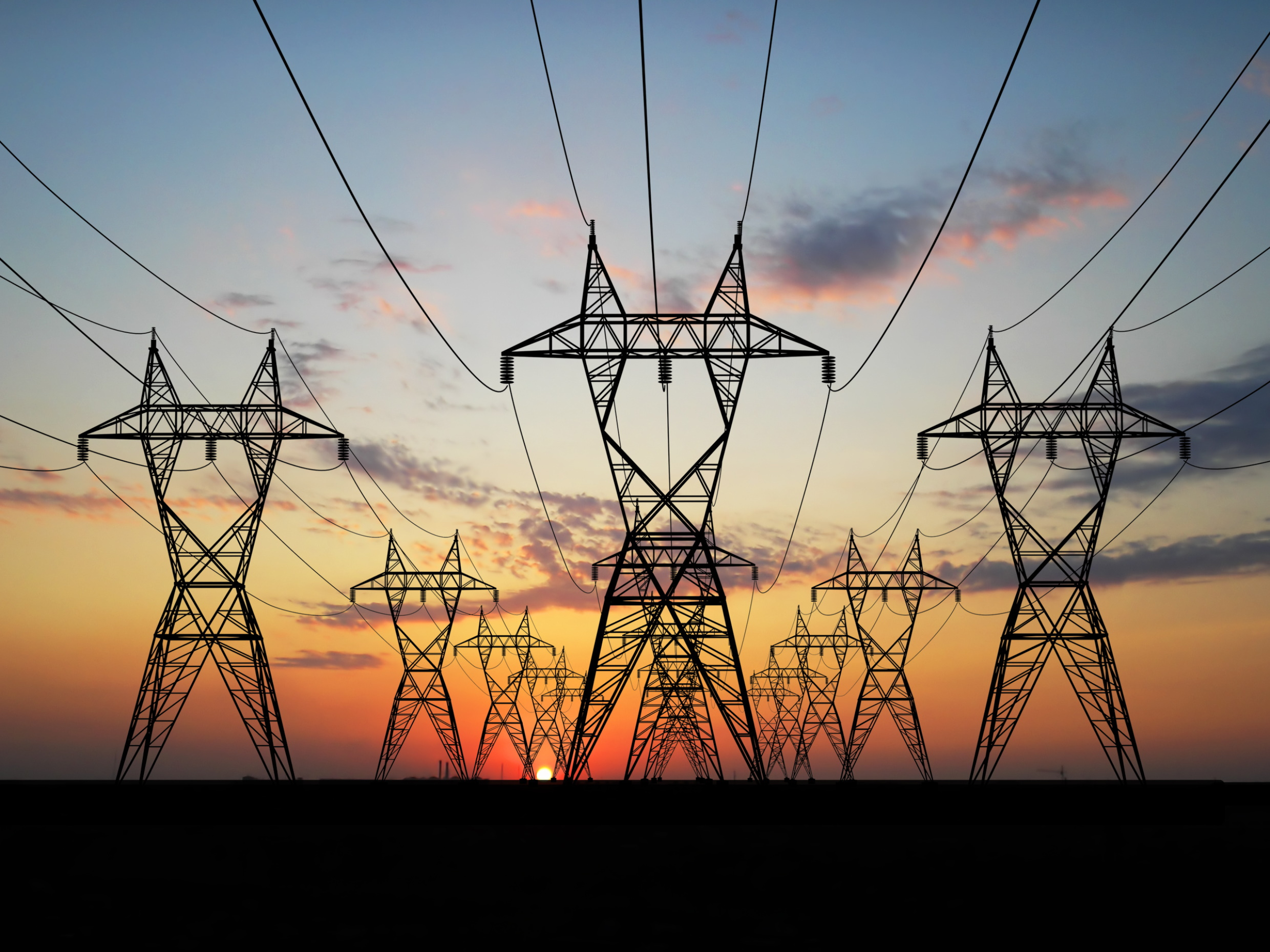 verdantis helps leading electric utility execute its large master